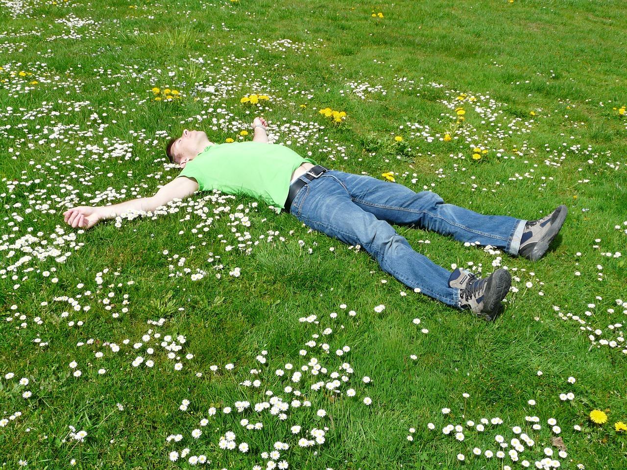 sieste dans la prairie